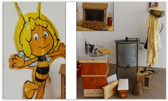 pszczoł (3)